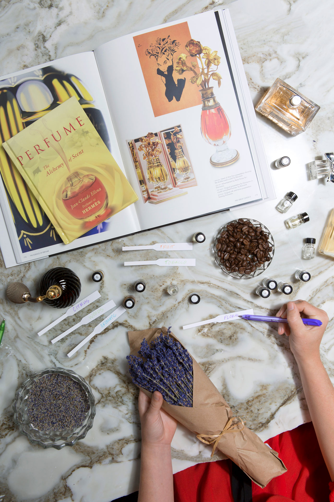 New Degree Program Business Of Beauty And Fragrance Scad Edu