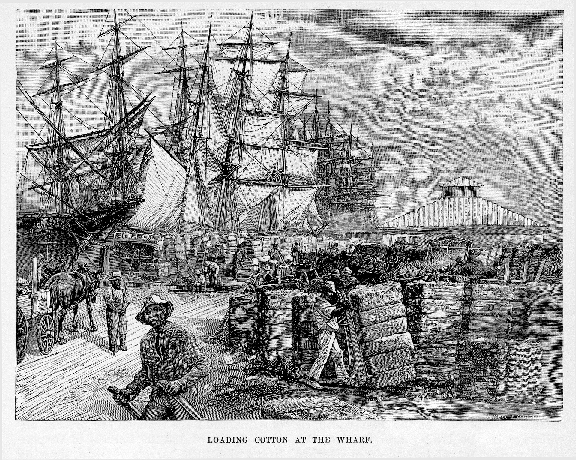 Loading Cotton at the Wharf, Harper's 1888