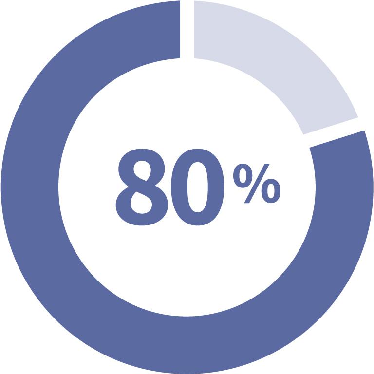 Eighty percent graphic