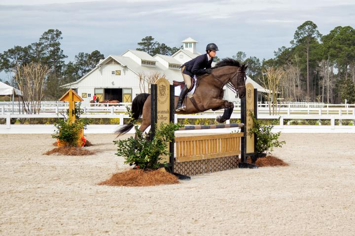 Equestrian studies student Michael Kocher jumping at Ronald C. Waranch Equestrian Center