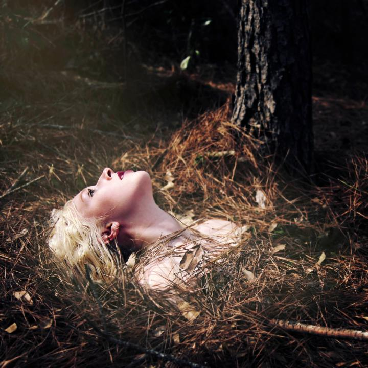 Photography, Alison Bushor