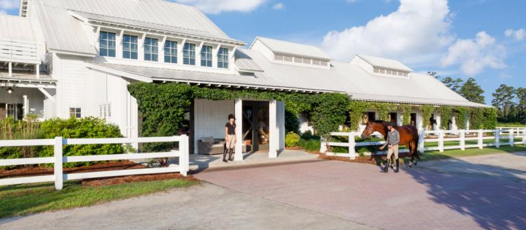 Equestrian studies facilities