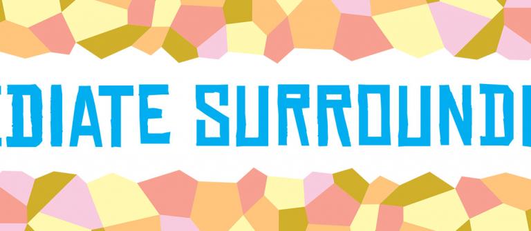 'Immediate Surroundings' sales exhibition 2014