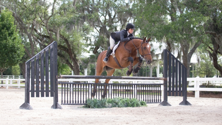 Equestrian studies student jumping fence