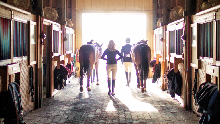 Equestrian studies students leading horses from barn