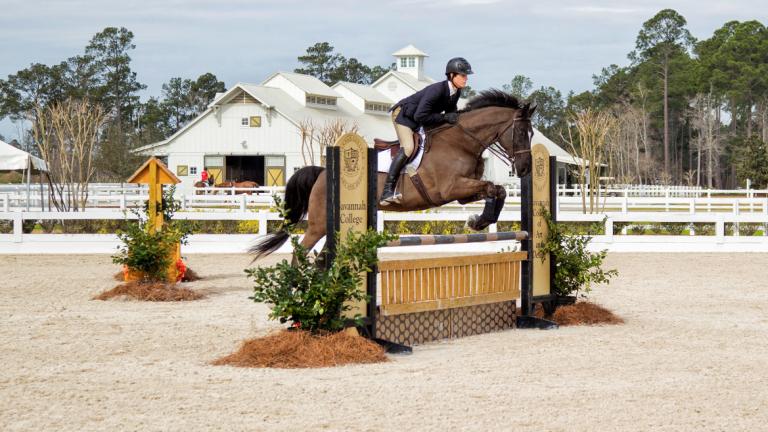 Equestrian studies student Michael Kocher jumping at Ronald C. Waranch Equestrian Center