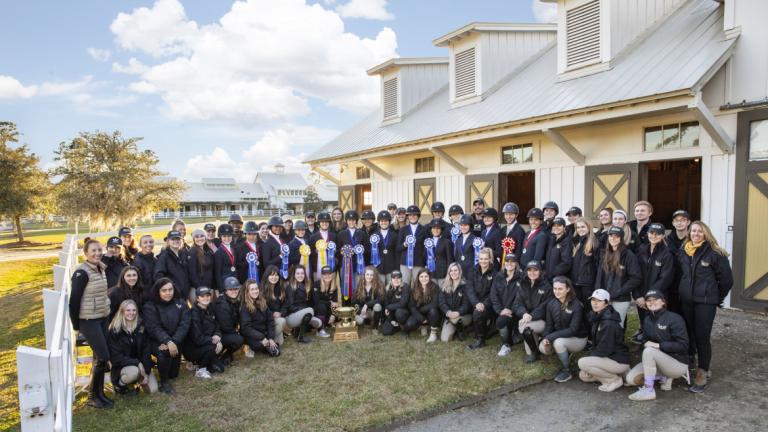Equestrian studies competitive team