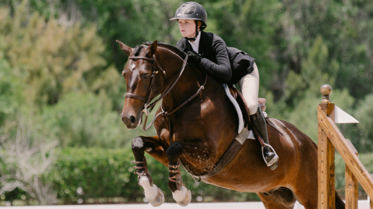Equestrian studies student in competition